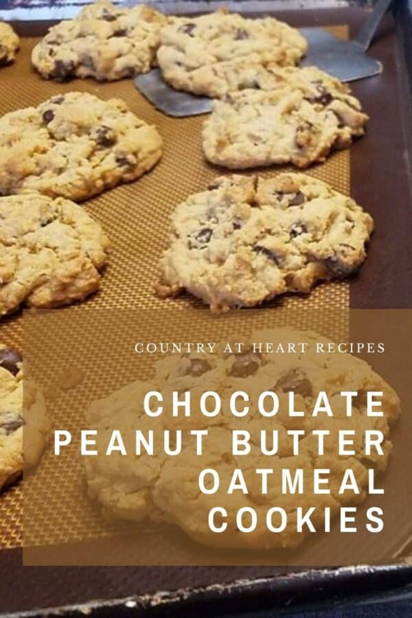 Pinterest Pin - Chocolate Peanut Butter Oatmeal Cookies