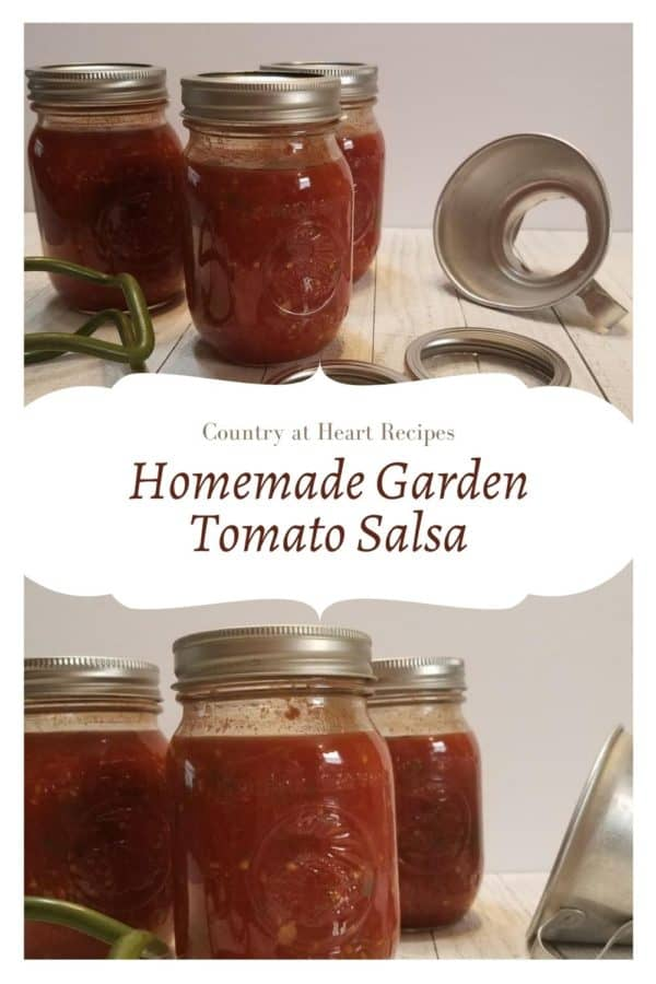 Pinterest Pin - Homemade Garden Tomato Salsa