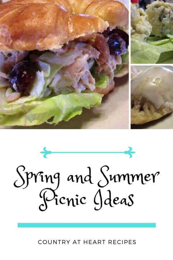 pinterest pin spring and summer picnic ideas