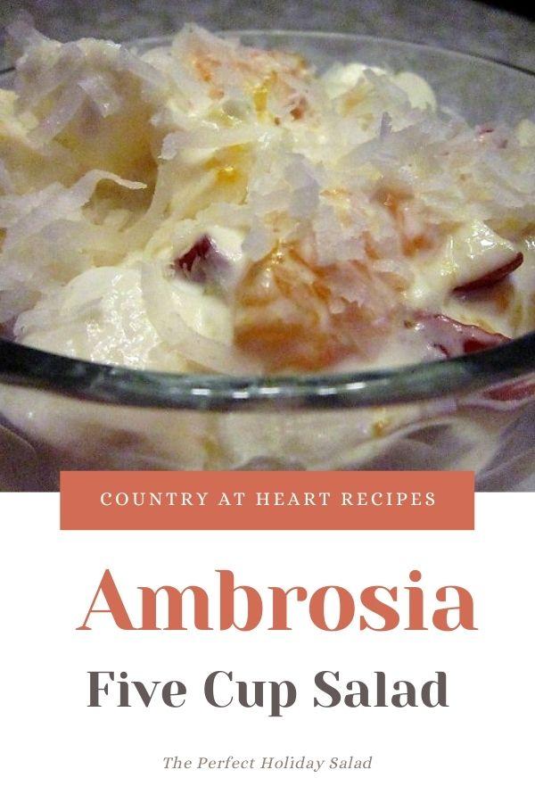 Pinterest Pin - Ambrosia - Five Cup Salad