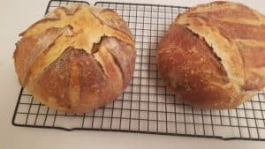 tangy sourdough loaves