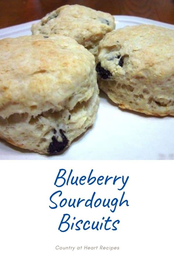 Pinterest Pin - Blueberry Sourdough Biscuits